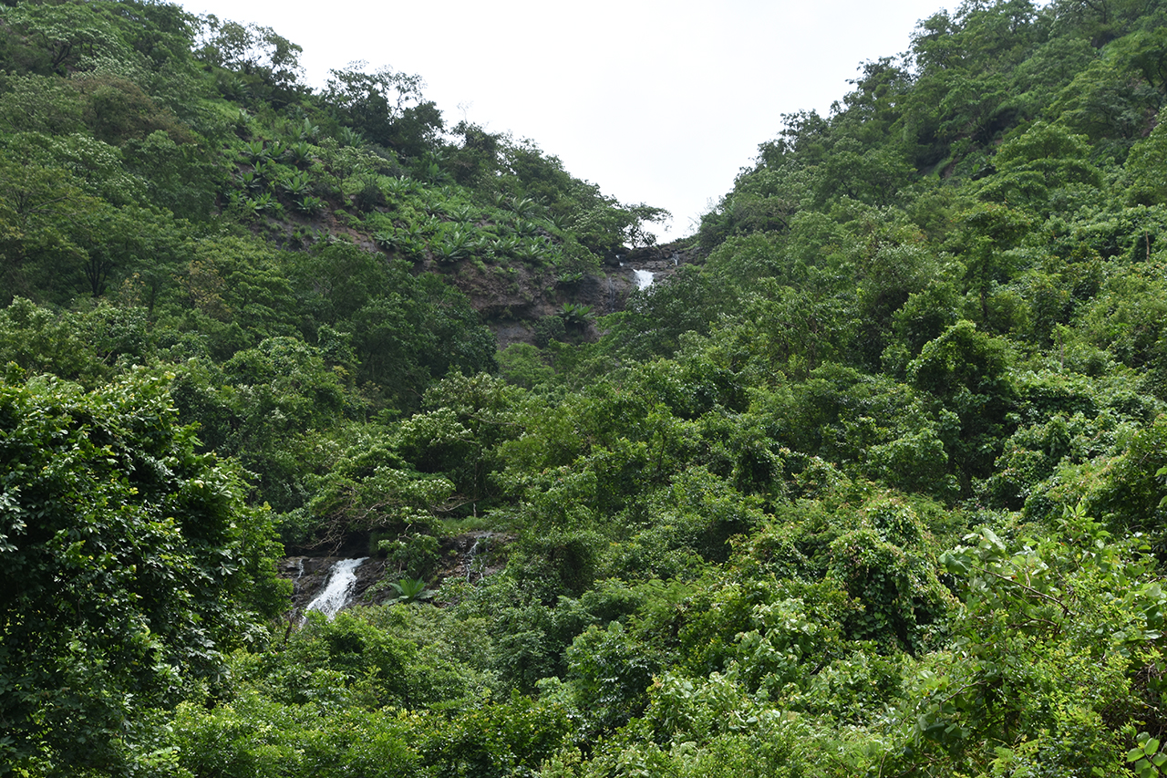 Waterfall on the way between Chiplun and Mahad
