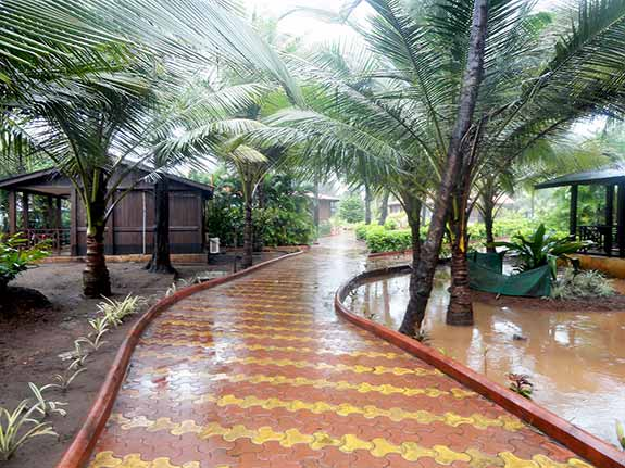 Walking track inside the resort