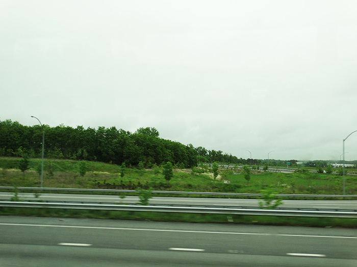 Greenary on the way to New York
